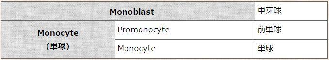 骨髄検査結果の見方(マルク・骨髄穿刺)単球系 分化過程/骨髄芽球 → 前骨髄球 (最大、アズール顆粒の出現) → 骨髄球 (核が小さくなる、特殊顆粒が出現) → 後骨髄球 (核がくびれ始める) → 単芽球 → 前単球 → 単球 → マクロファージ