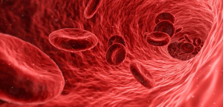 血液検査の結果(治療終了満5年~現在)