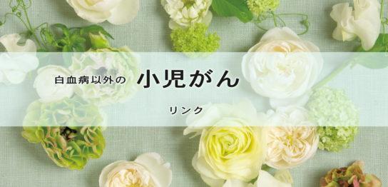 小児がん闘病記ブログ リンク集