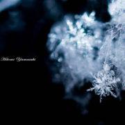 雪の結晶 写真