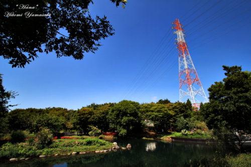 紅白鉄塔と青空