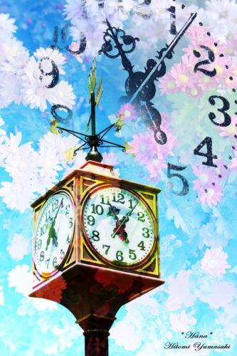 時計と菊の花